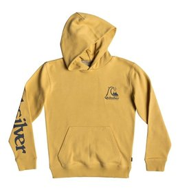 Quiksilver Quiksilver Youth Spring Rolls Hoody