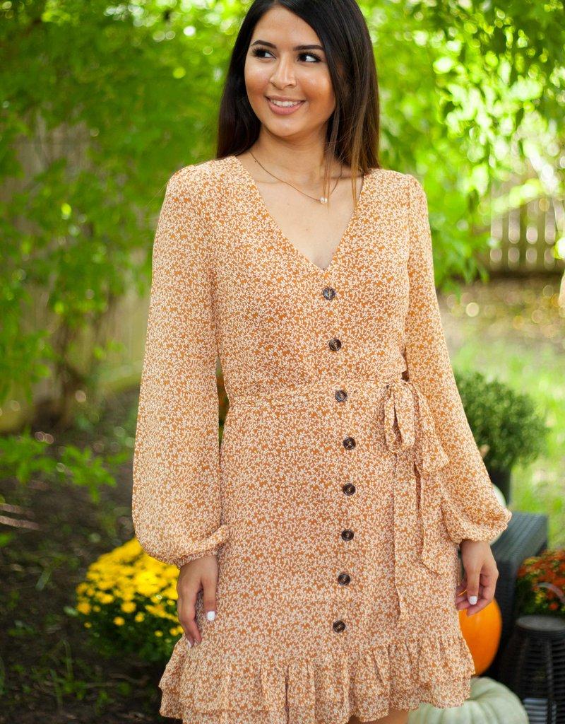 Cutest Pumpkin in the Patch Dress