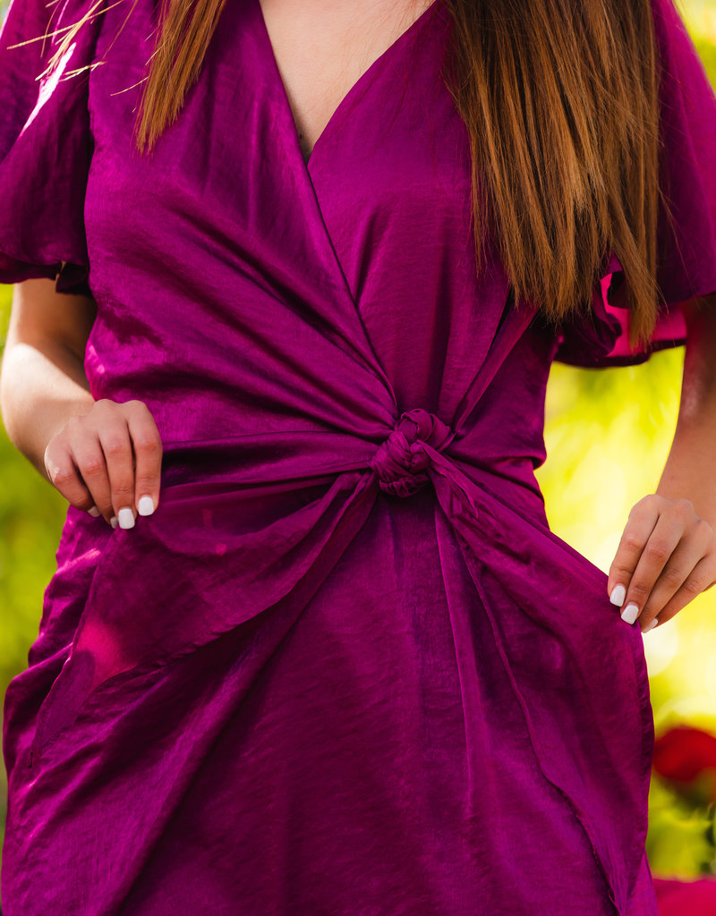 So Berry Cute Dress