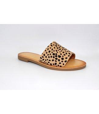 Cheetah Gal Sandal