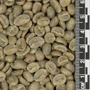 Raw Coffee Burundi Mbirizi *