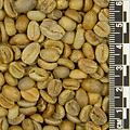 Java Echwan Natural *