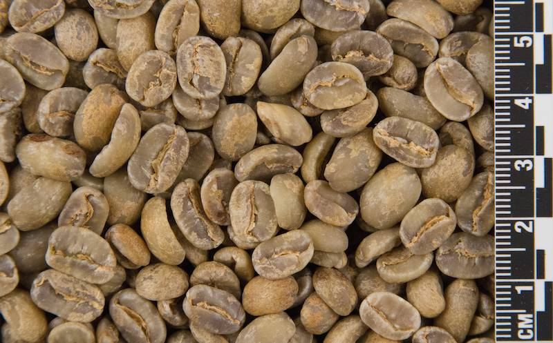 Raw Coffee (priced per pound)