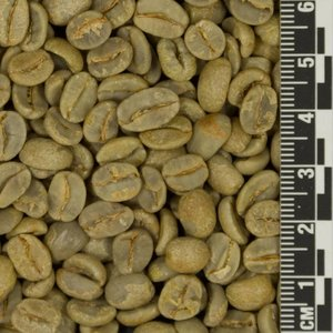Raw Coffee Brazil Fazenda Lagarta *
