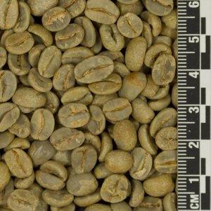 Raw Coffee Brazil Fazenda Latarga *