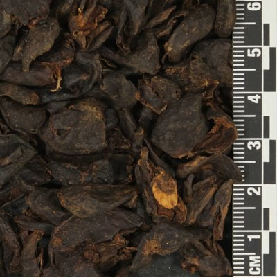 Honduras Cascara Tea 1oz