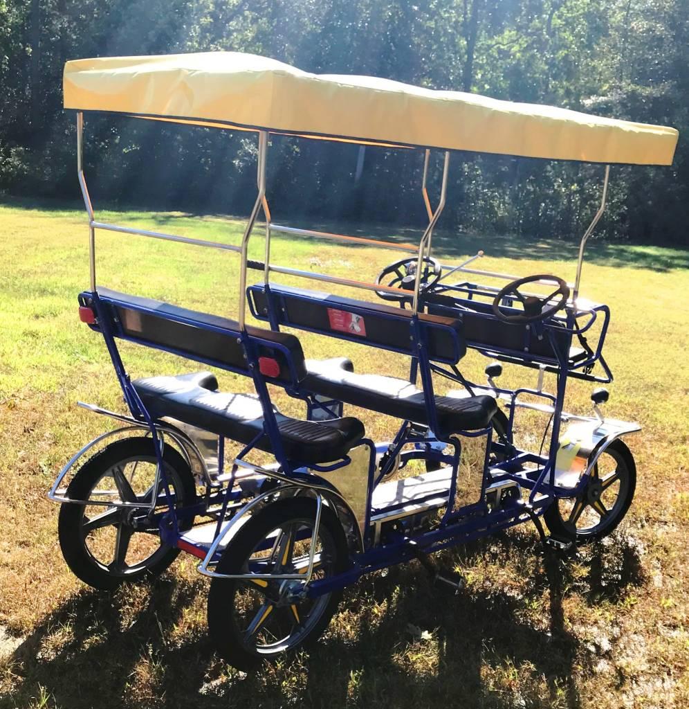 Used 2018 NewTecnoArt Selene Bus Surrey Bike