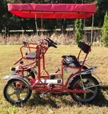 NewTecnoArt Selene Sport Surrey Bike