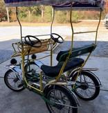 Used TecnoArt Surrey Bike 2A