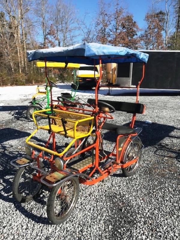 Used TecnoArt Selena Surrey Bike