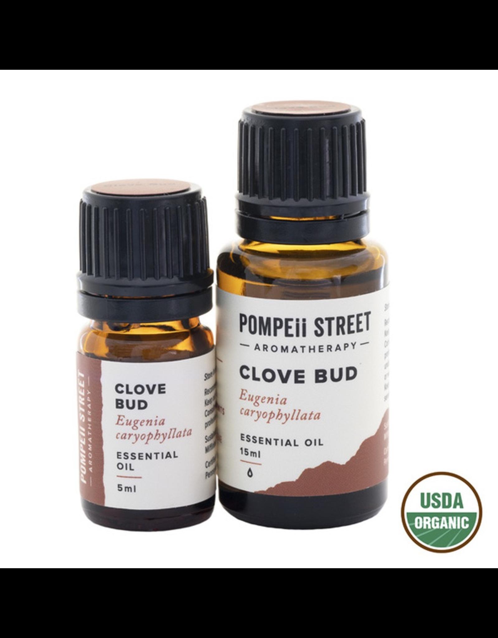 Organic Clove Bud Essential Oil 15ml
