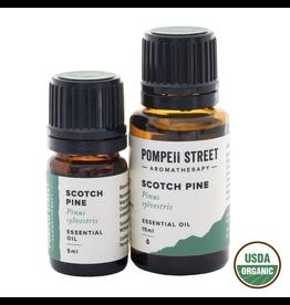 Organic Pine, Scotch Essential Oil 15ml.