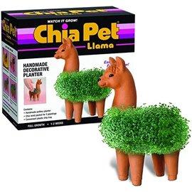 Joseph Entreprises Chia Pet Planter - Llama