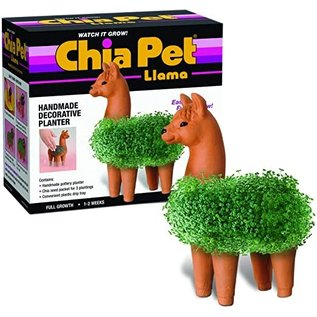 Joseph Entreprises Plante Compagnon Chia - Animal - Lama