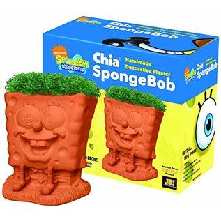 Joseph Entreprises Plante Compagnon Chia - Nickelodeon - Bob l'Éponge