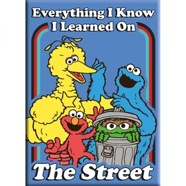 Aquarius Magnet - Sesame Street - Everything I Know I Learned On the Street