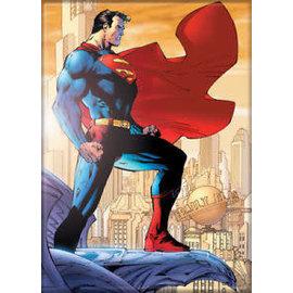 Ata-Boy Aimant - DC Comics - Superman de profile