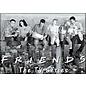 Ata-Boy Aimant - Friends - Rachel, Ross, Joey, Chandler, Phoebe, Monica en noir et blanc