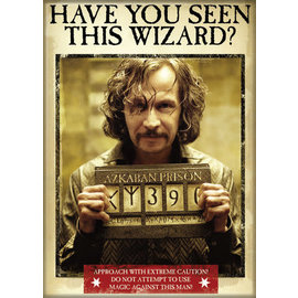 Ata-Boy Magnet - Harry Potter - Have You Seen This Wizard ?