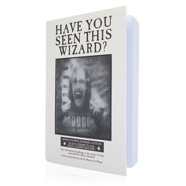 Wow! Stuff Notebook - Harry Potter - Have You Seen This Wizard ? Lenticular