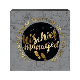 Spoontiques Frame - Harry Potter - Mischief Manage Box Sign with Golden Accents