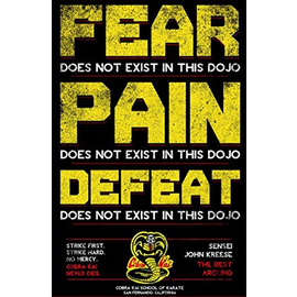 Chez Rhox Aimant - Cobra Kai - Fear, Pain, Defeat Does Not Exist in This Dojo