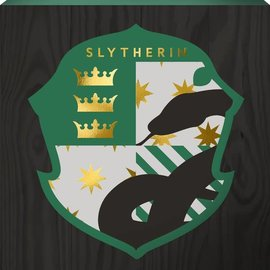 Spoontiques Frame - Harry Potter - Slytherin Crest Box Sign with Golden Accents