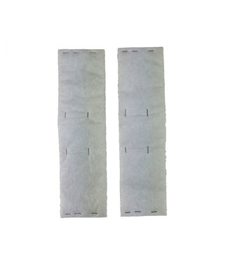 Riccar Riccar Vacuum Post Filter 2pk - 4000, 6000 Series