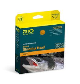 Rio Rio Scandi Short