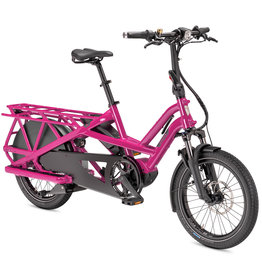 Tern GSD S10 LX 500 watt Dragon Fruit