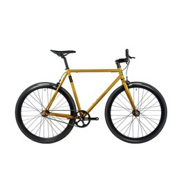 Fyxation Eastside X 55/M Gold