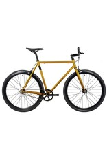 Fyxation Eastside X 52/S Gold