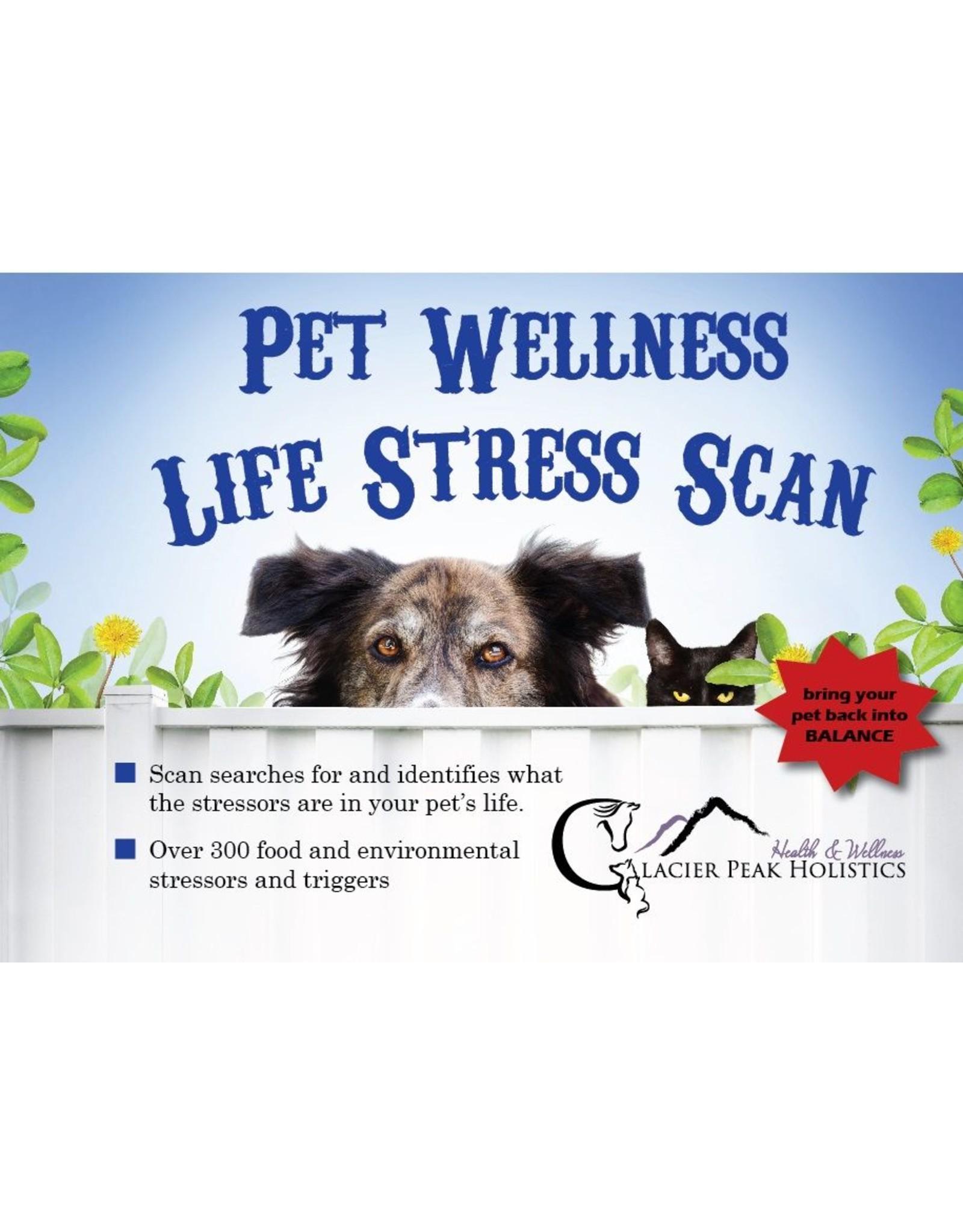 Glacier Peak Holistics Pet Wellness Life Stress Scan
