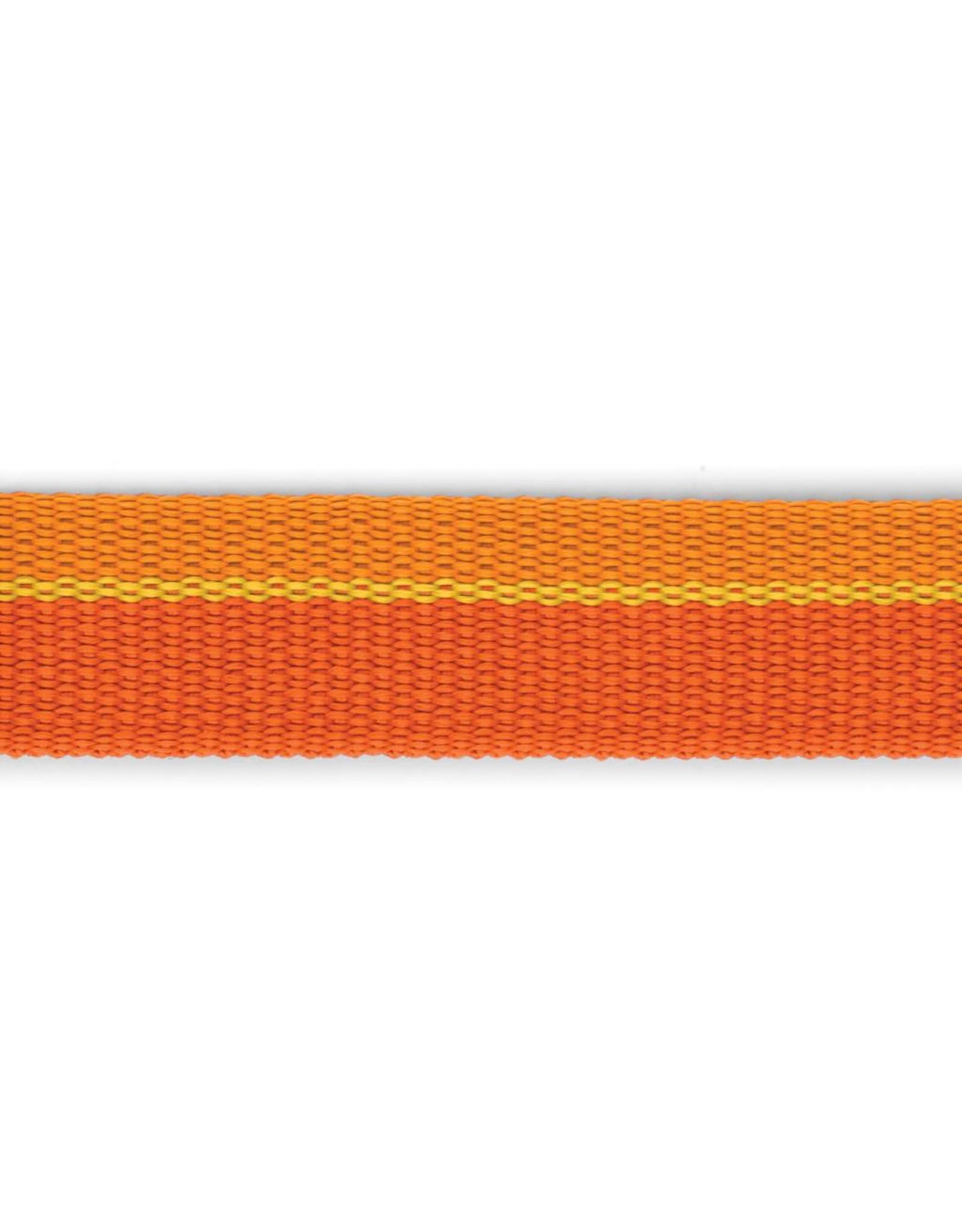 Ruffwear Roamer™ Leash