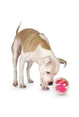 Planet Dog Mazee