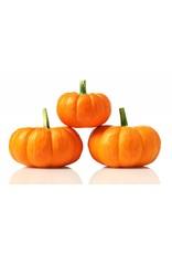 White Balsamic Pumpkin Spice