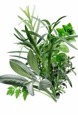 Infused Olive Oil Herbes de Provence