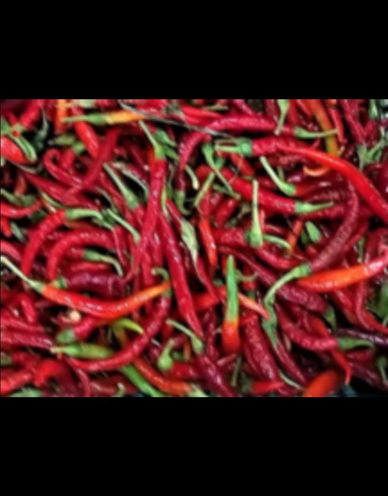 Agrumato Cayenne Chili (SPICY!)