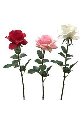 Two's Company Single Stem Rose