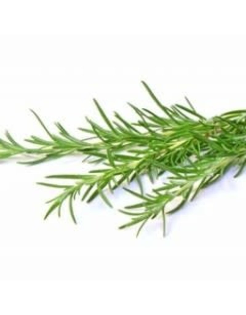 Agrumato Wild Rosemary