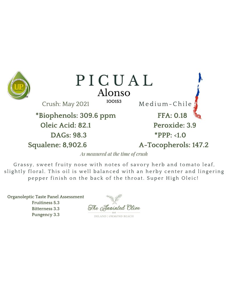 Southern Alonso's Picual Medium (Chile)