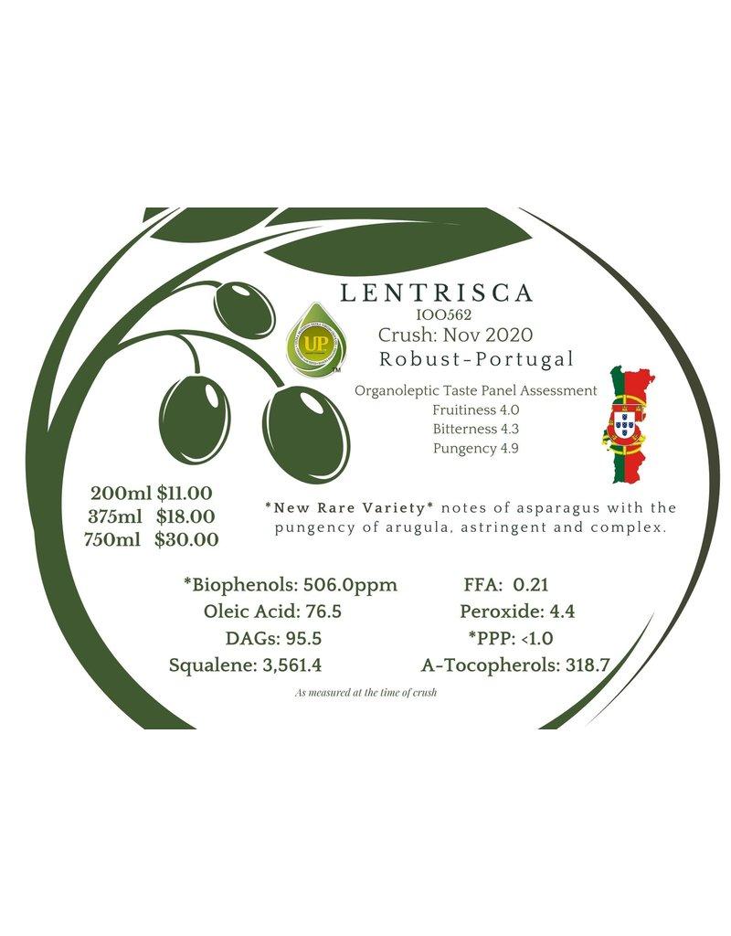 Northern Lentrisca Portugal