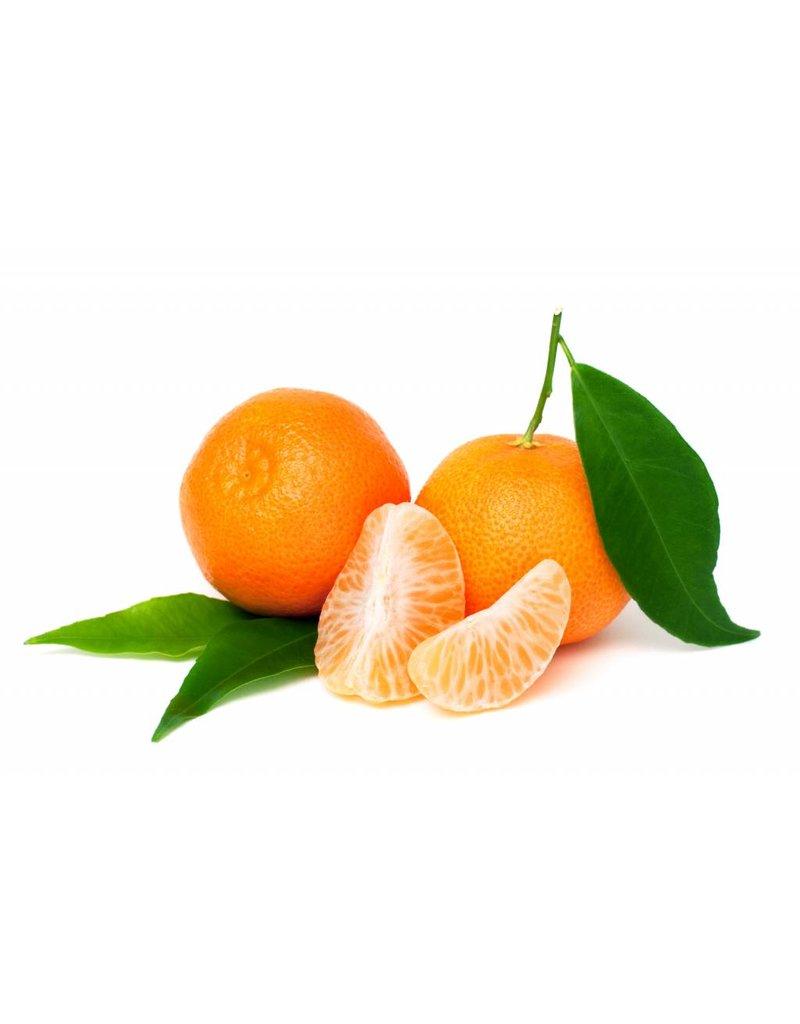 Dark Balsamic Tangerine