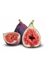 Dark Balsamic Fig