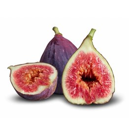 Dark Balsamic Black Mission Fig