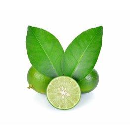 White Balsamic Key Lime