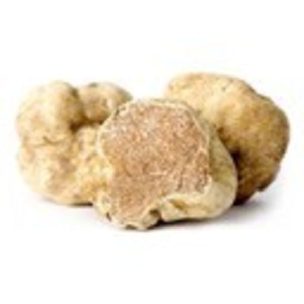 The Anointed Olive Gourmet Oil White Truffle