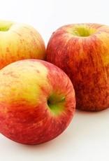 White Balsamic Gravenstein Apple