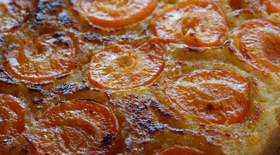 Blenheim Apricot & Olive Oil Cake
