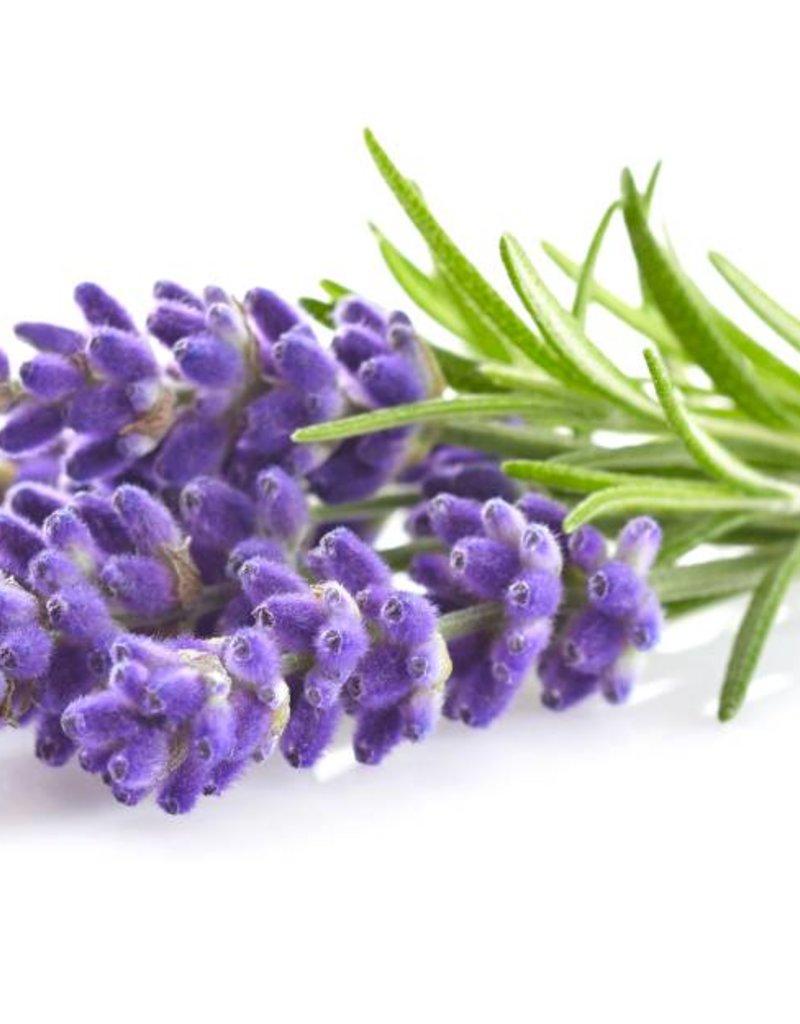 Dark Balsamic Lavender